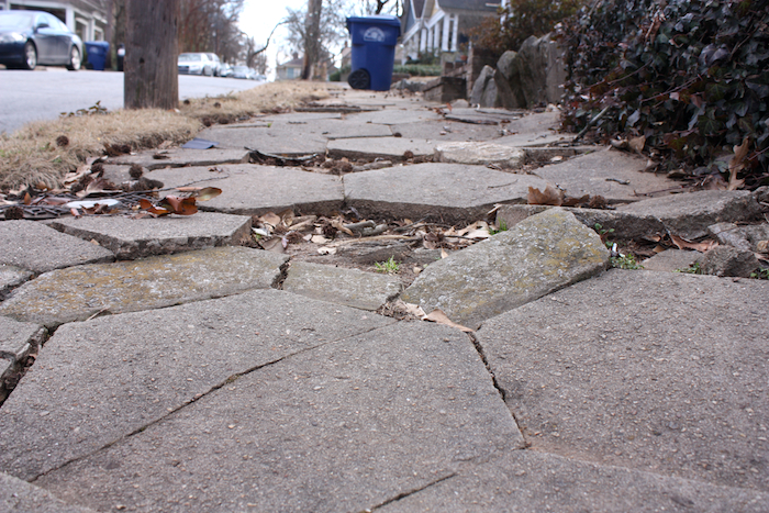 Damaged sidewalk, Atlanta's Candler Park neighborhood. Photo by author.