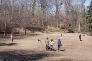 Oakhurst dog park, January 2014.