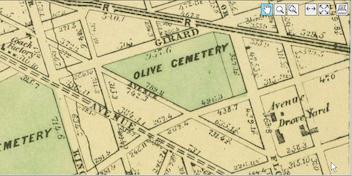 Avenue Drove Yard